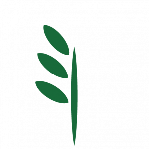 FOREST FARM_TREE ICON-03
