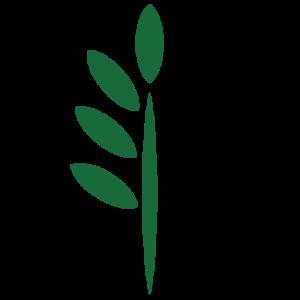 FOREST FARM_TREE ICON-04