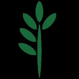 FOREST FARM_TREE ICON-05