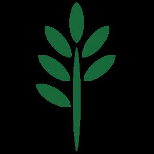 FOREST FARM_TREE ICON-06